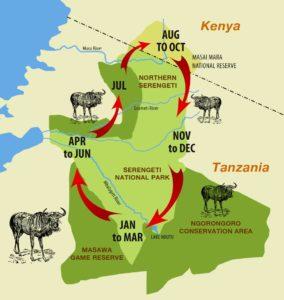 Velká migrace zvířat v Serengeti