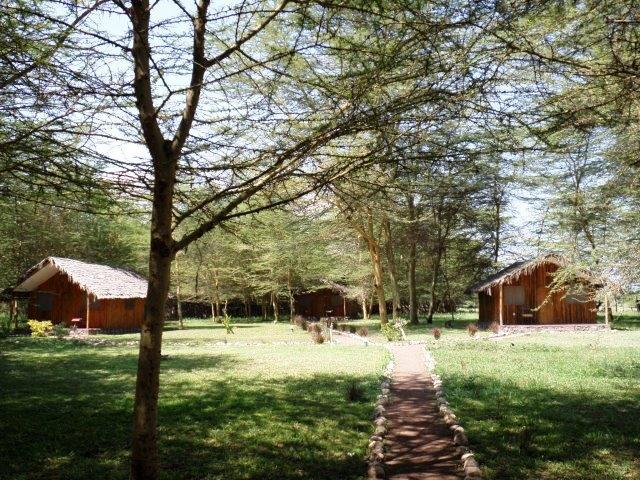 Lilac Camp Site & Tented Camp