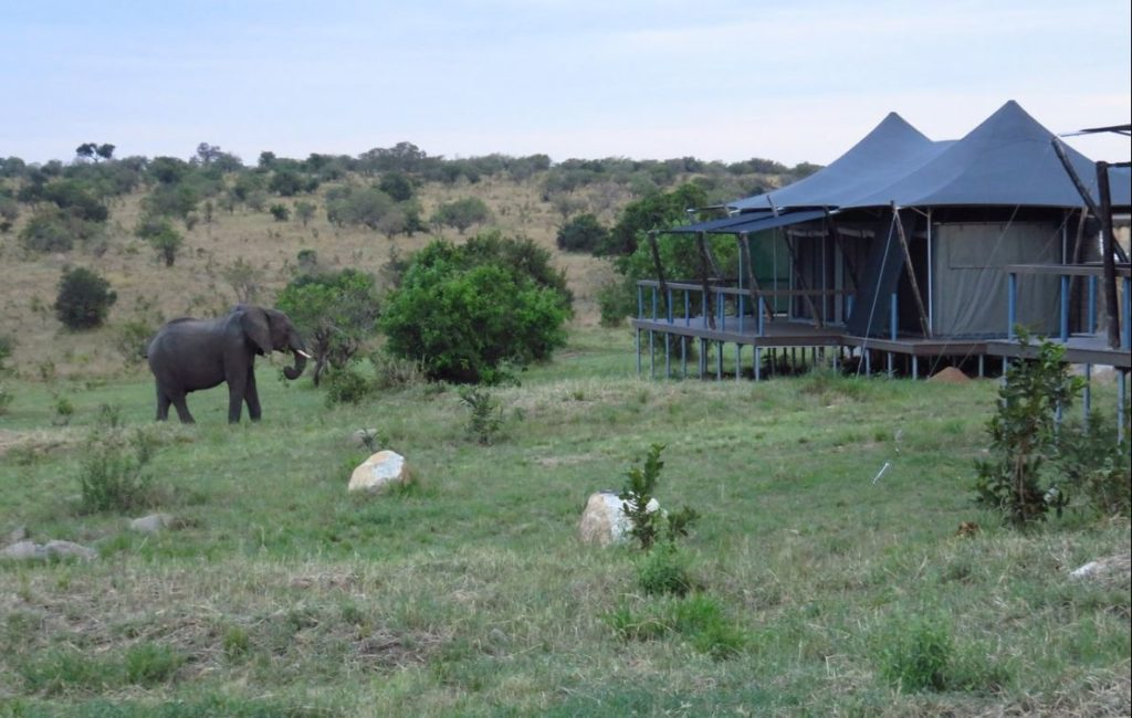 Mara Mara Tented Lodge