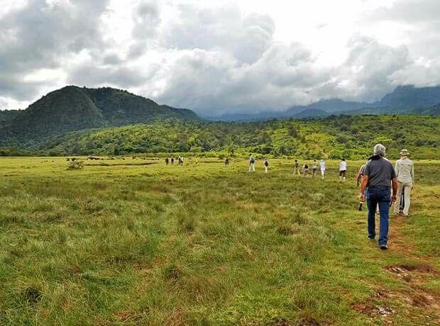 Pěší safari v národním parku Arusha